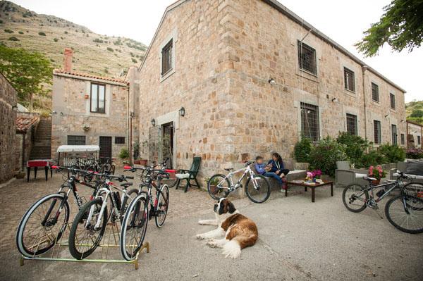 esterno con mountain bike